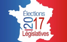 LEGISLATIVES 2017 : L'ALLIANCE ECOLOGISTE INDEPENDANTE LANCE UN APPEL A CANDIDATURE A SES ADHERENTS ET SYMPATHISANTS